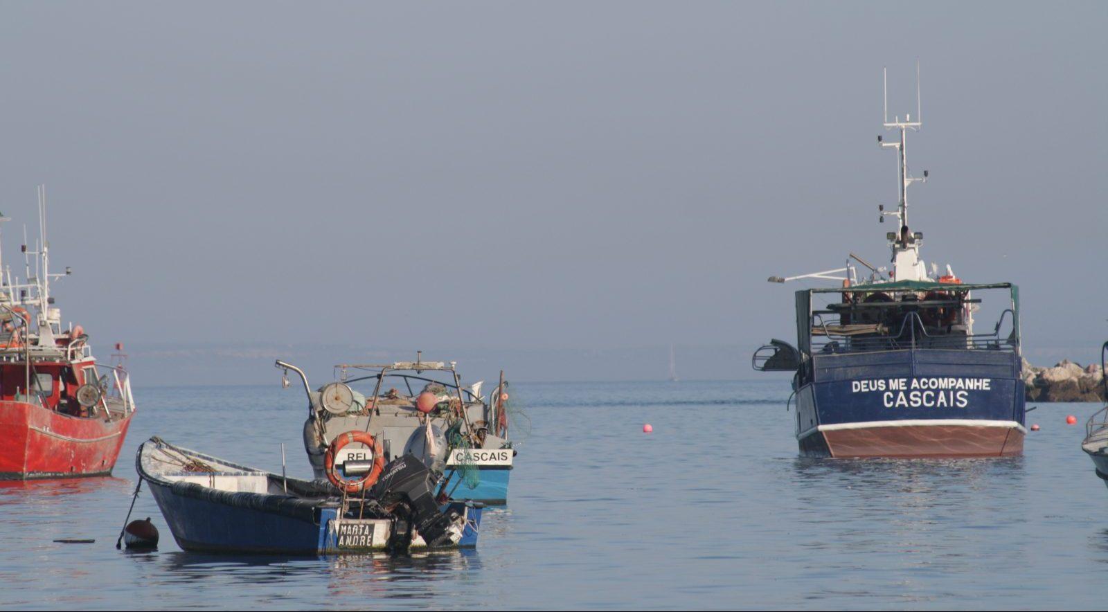 Vissershaven van Cascais