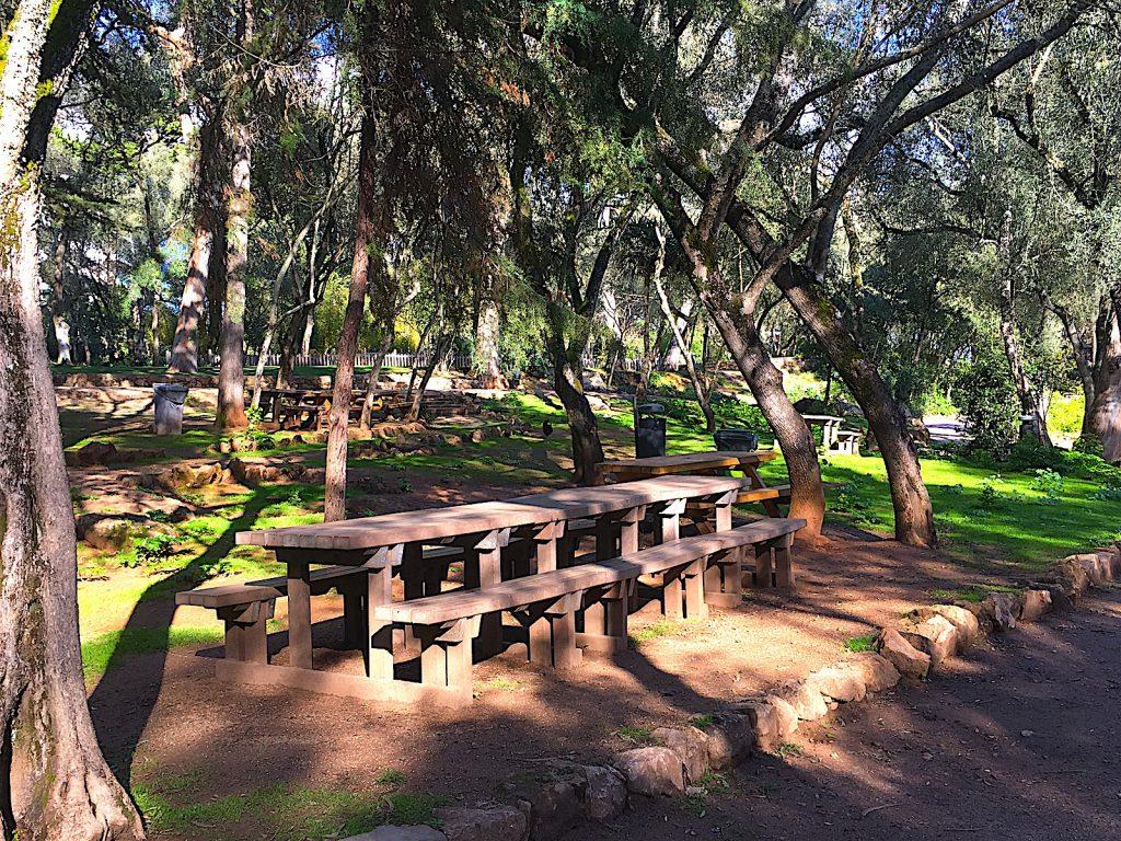 Parque Marechal Carmona - picknick
