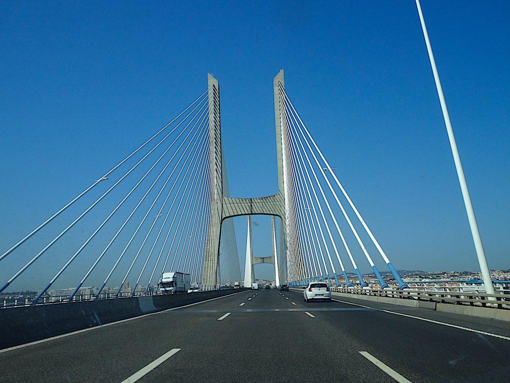 Vascodagama brugnaarlis