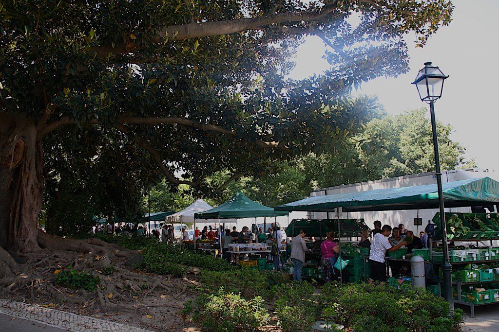 Jardim Principe real - markt