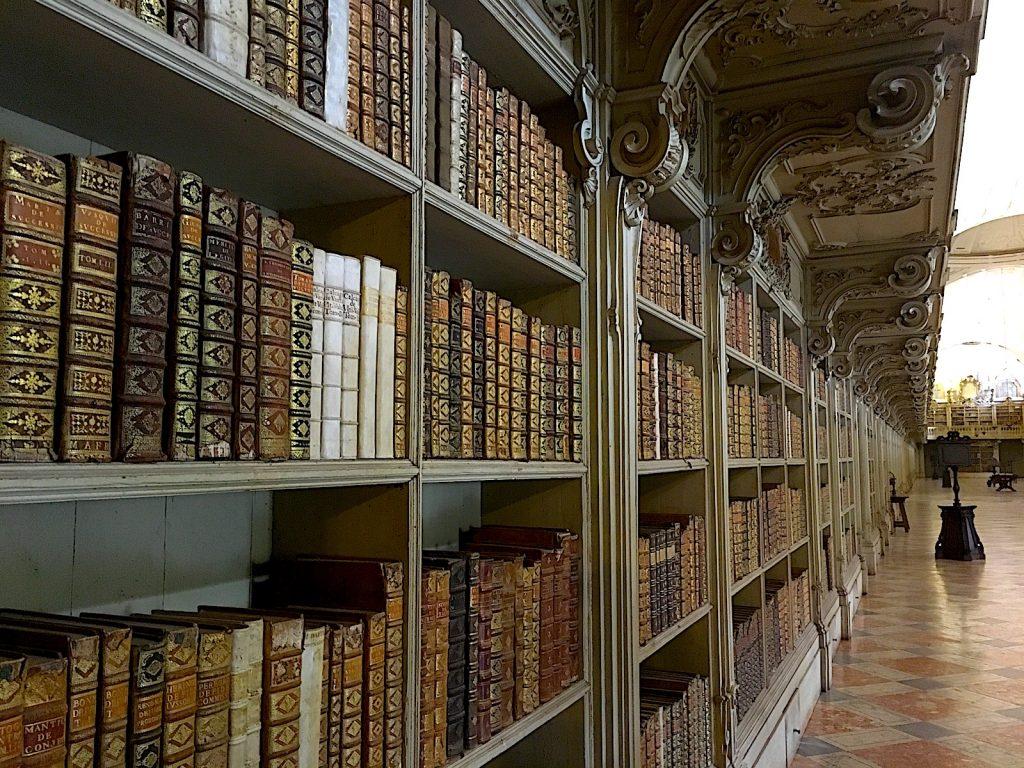 bibliotheek mafra