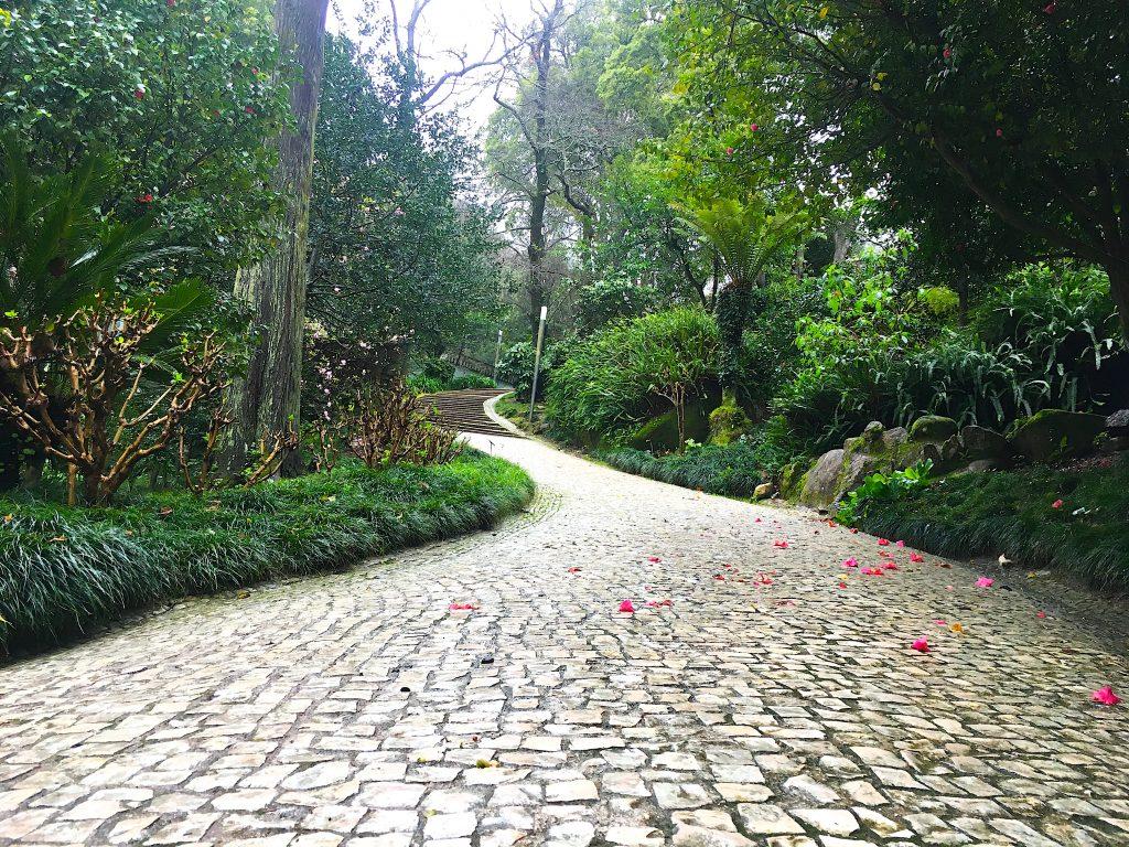 Parque Liberdade Sintra pad