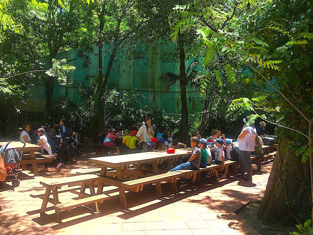 dierentuin lissabon picknick