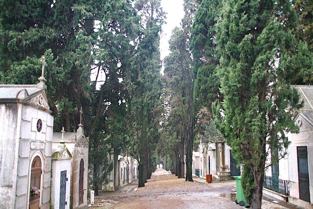 Cemitério dos Prazeres paden